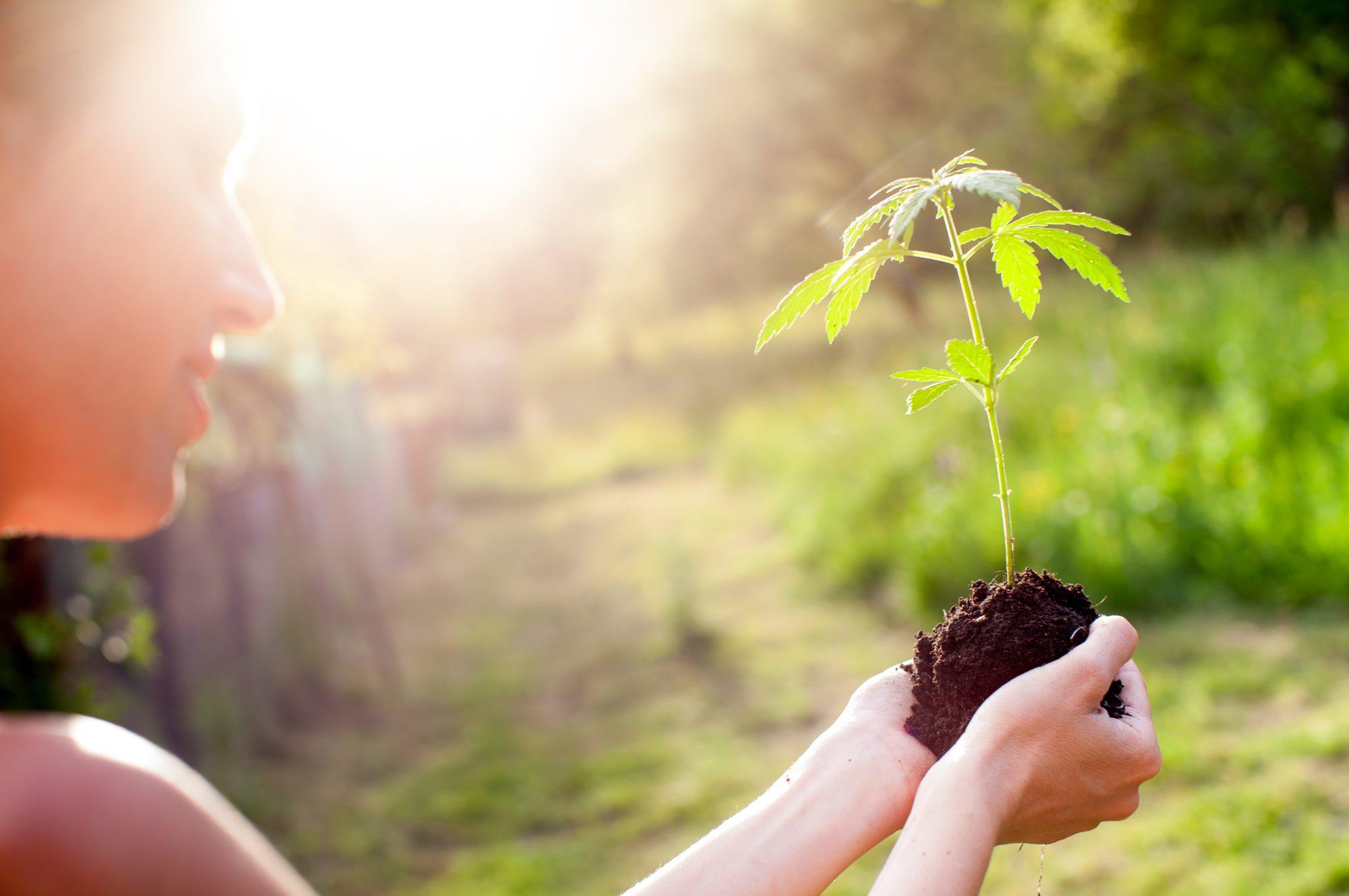 Be-Grow GmbH